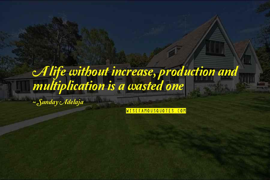 Purpose And Destiny Quotes By Sunday Adelaja: A life without increase, production and multiplication is