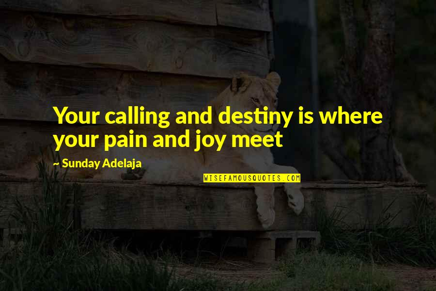 Purpose And Destiny Quotes By Sunday Adelaja: Your calling and destiny is where your pain