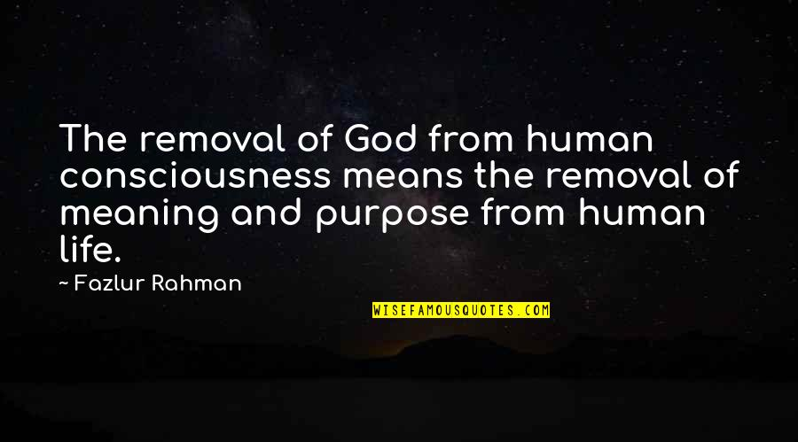 Purpose And God Quotes By Fazlur Rahman: The removal of God from human consciousness means