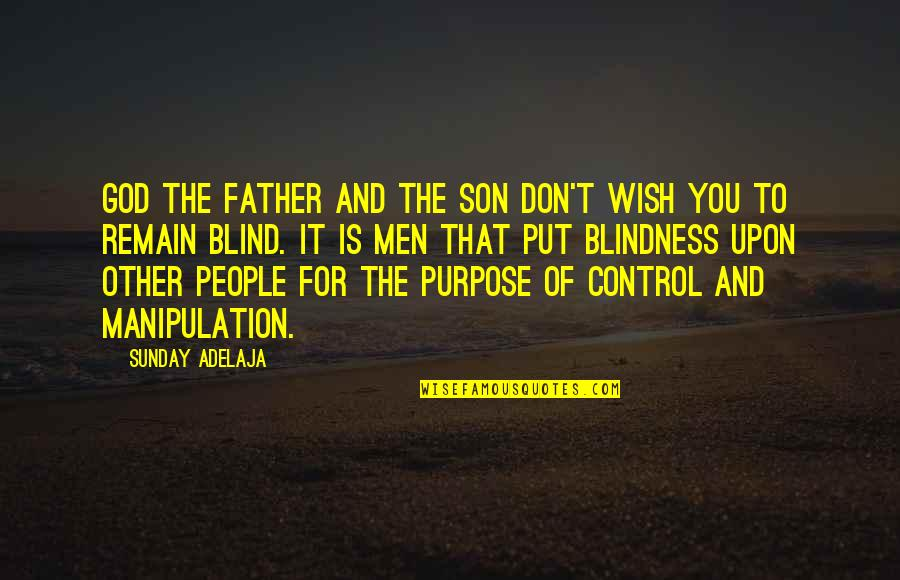 Purpose And God Quotes By Sunday Adelaja: God the Father and the Son don't wish