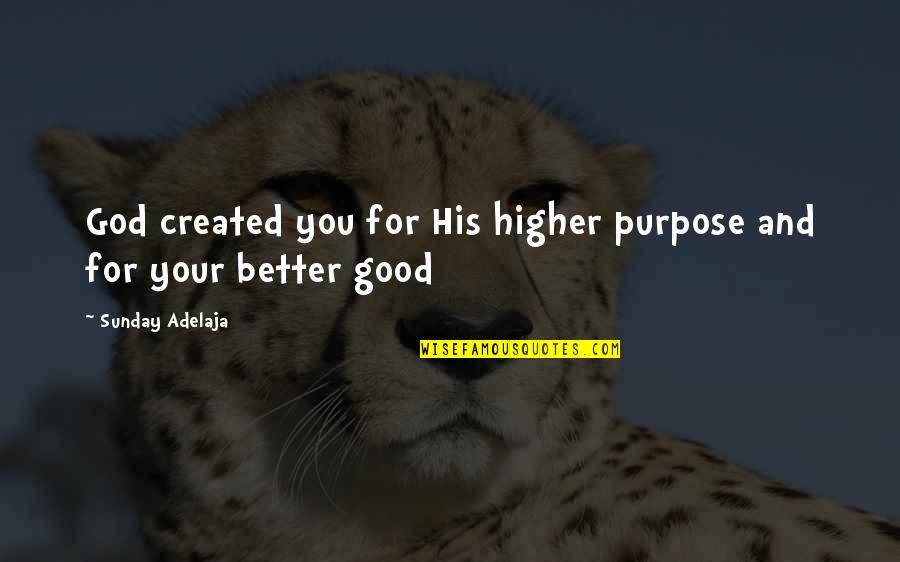 Purpose And God Quotes By Sunday Adelaja: God created you for His higher purpose and