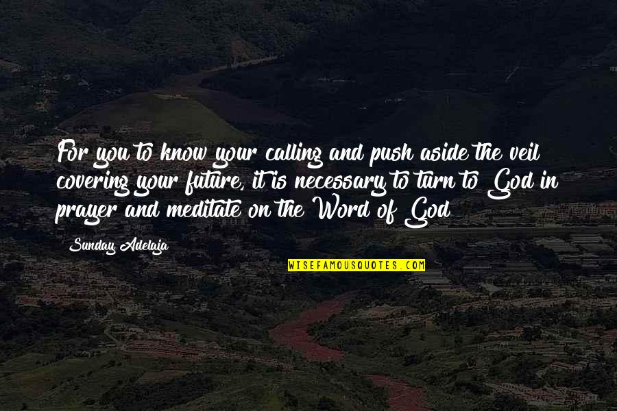 Purpose And God Quotes By Sunday Adelaja: For you to know your calling and push