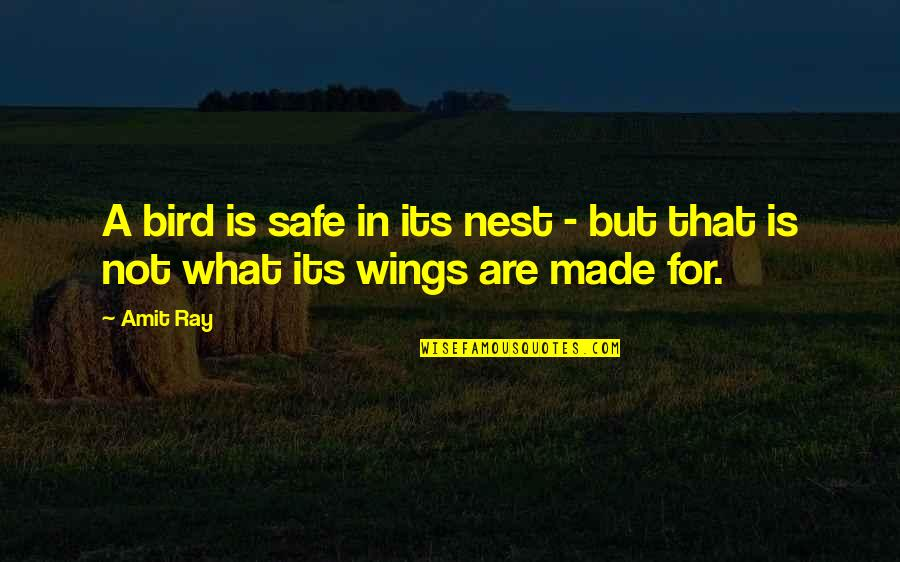 Purpose In Life Inspirational Quotes By Amit Ray: A bird is safe in its nest -