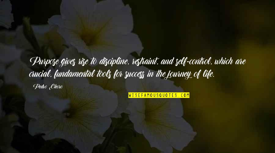 Purpose In Life Inspirational Quotes By Pedro Okoro: Purpose gives rise to discipline, restraint, and self-control,
