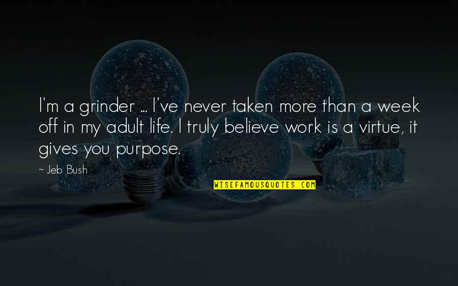 Purpose In Work Quotes By Jeb Bush: I'm a grinder ... I've never taken more