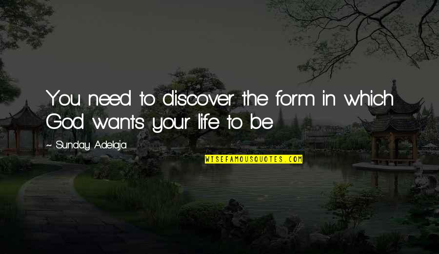 Purpose In Work Quotes By Sunday Adelaja: You need to discover the form in which