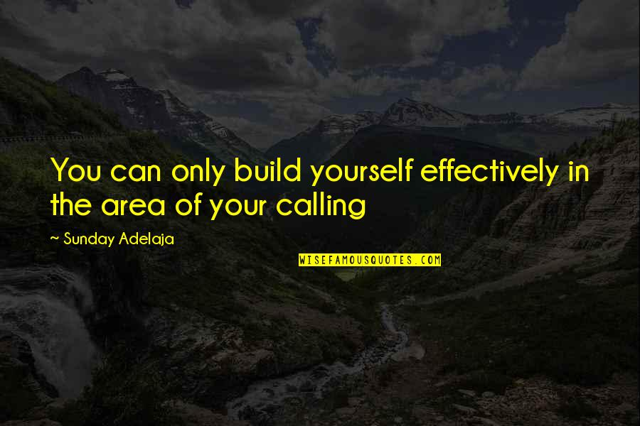 Purpose In Work Quotes By Sunday Adelaja: You can only build yourself effectively in the