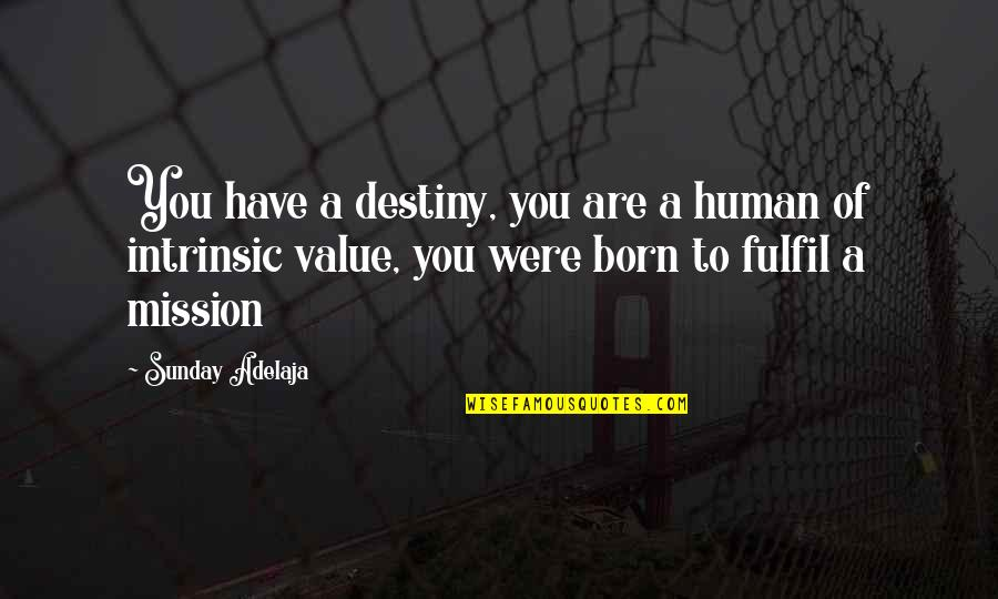 Purpose Of Human Life Quotes By Sunday Adelaja: You have a destiny, you are a human