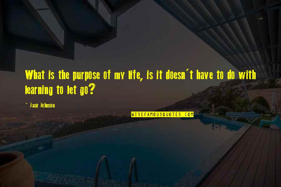 Purpose To Life Quotes By Jack Johnson: What is the purpose of my life, is