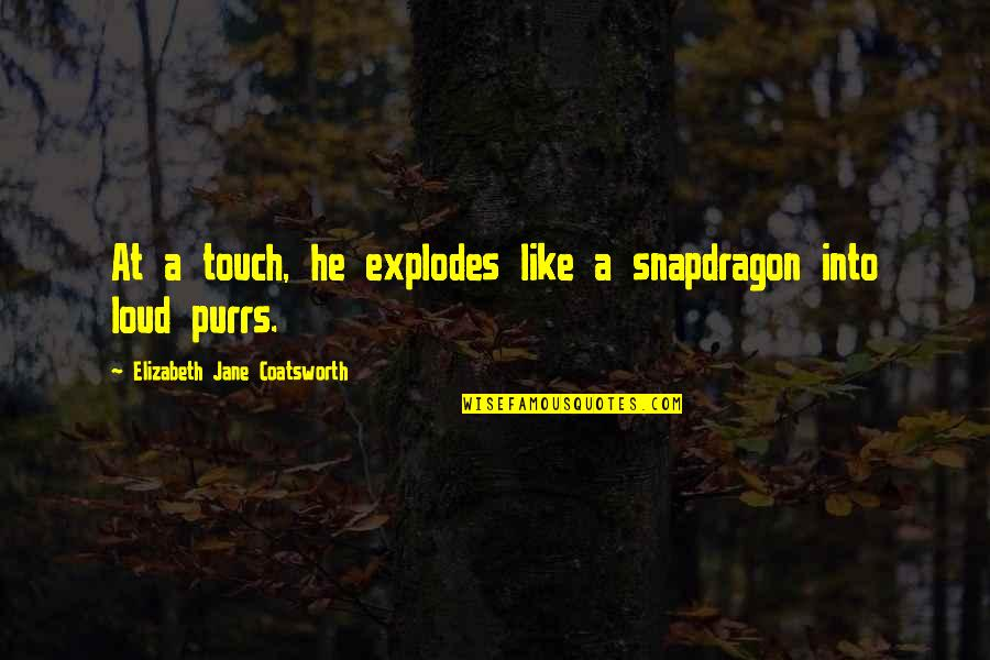 Purrs Quotes By Elizabeth Jane Coatsworth: At a touch, he explodes like a snapdragon