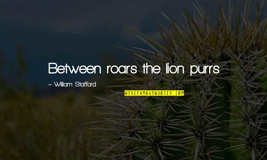 Purrs Quotes By William Stafford: Between roars the lion purrs.