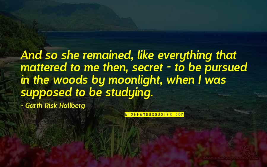 Pursued Quotes By Garth Risk Hallberg: And so she remained, like everything that mattered