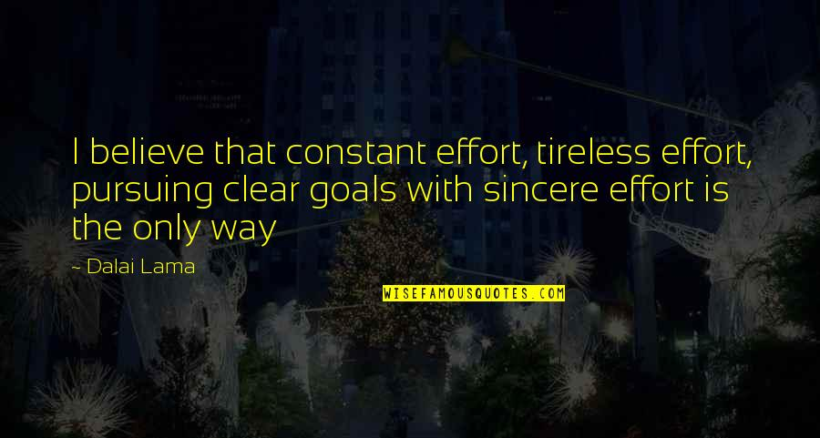 Pursuing Your Goals Quotes By Dalai Lama: I believe that constant effort, tireless effort, pursuing