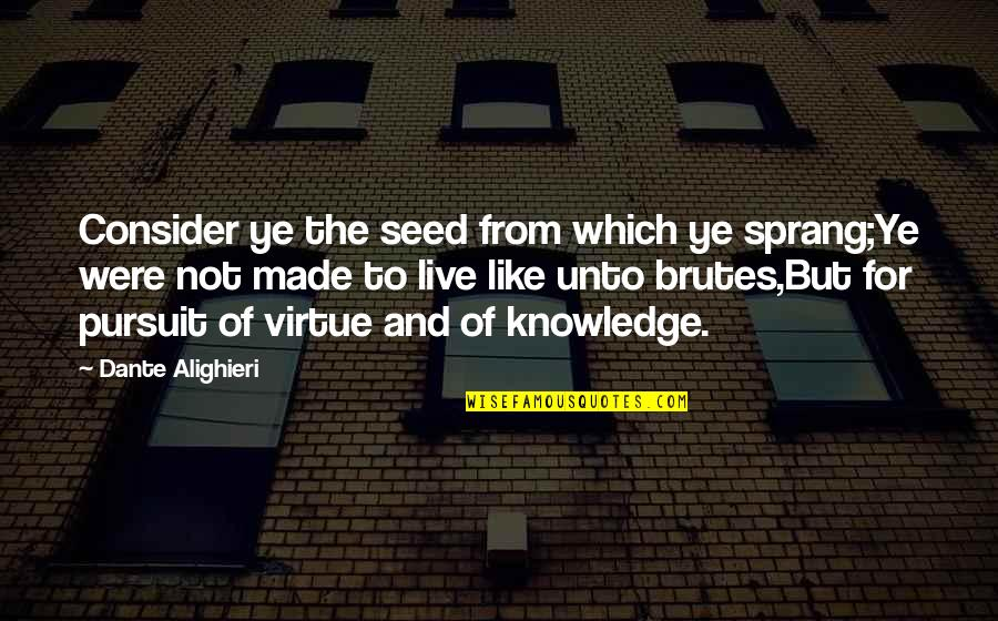 Pursuit Of Knowledge Quotes By Dante Alighieri: Consider ye the seed from which ye sprang;Ye