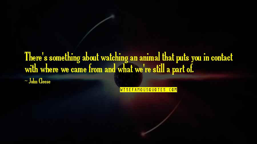 Puts Quotes By John Cleese: There's something about watching an animal that puts