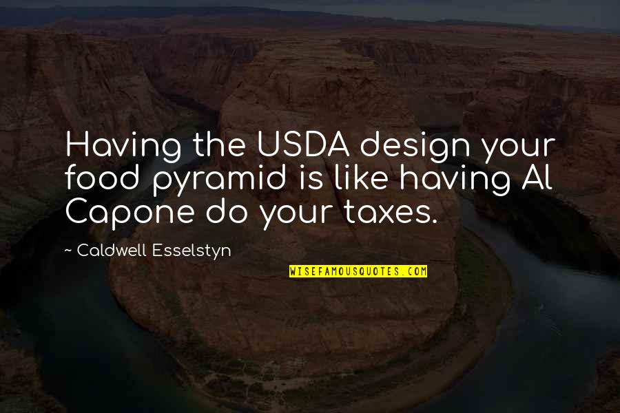 Pyramid Quotes By Caldwell Esselstyn: Having the USDA design your food pyramid is