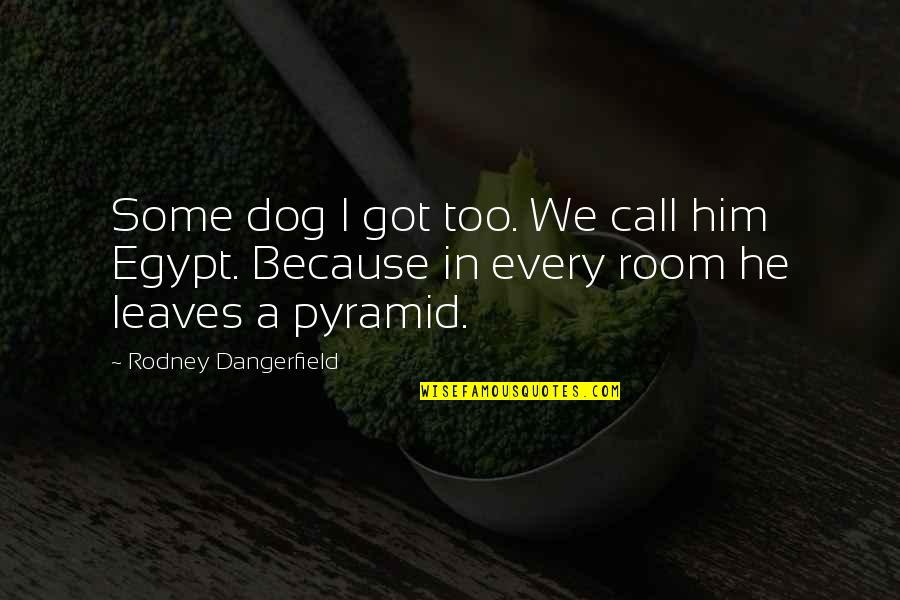 Pyramid Quotes By Rodney Dangerfield: Some dog I got too. We call him