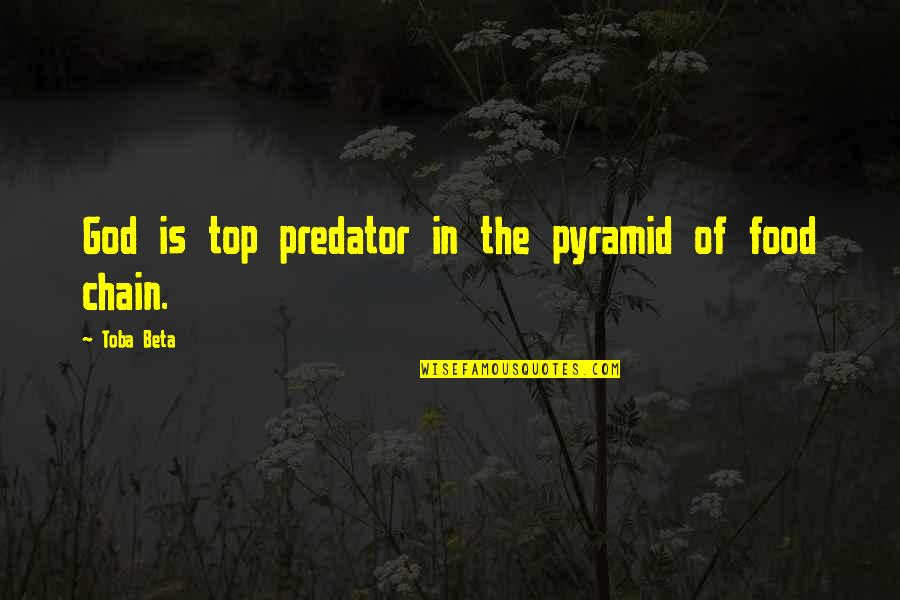 Pyramid Quotes By Toba Beta: God is top predator in the pyramid of