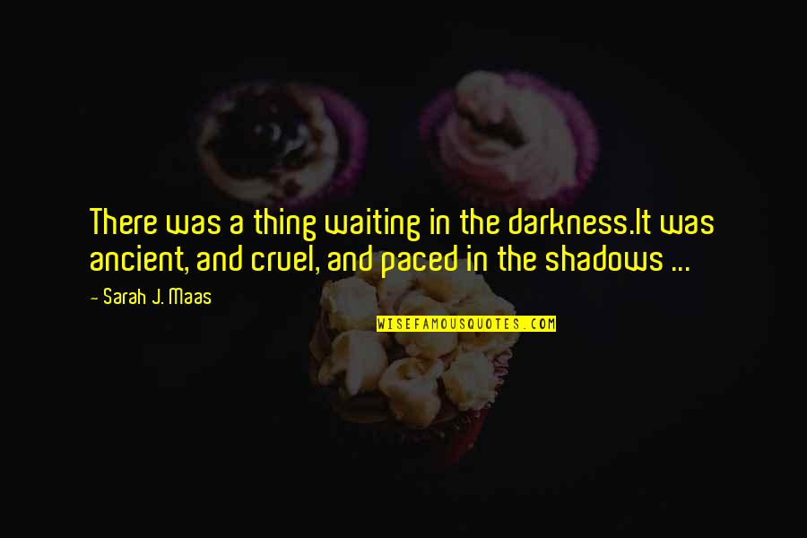Queen And Throne Quotes By Sarah J. Maas: There was a thing waiting in the darkness.It