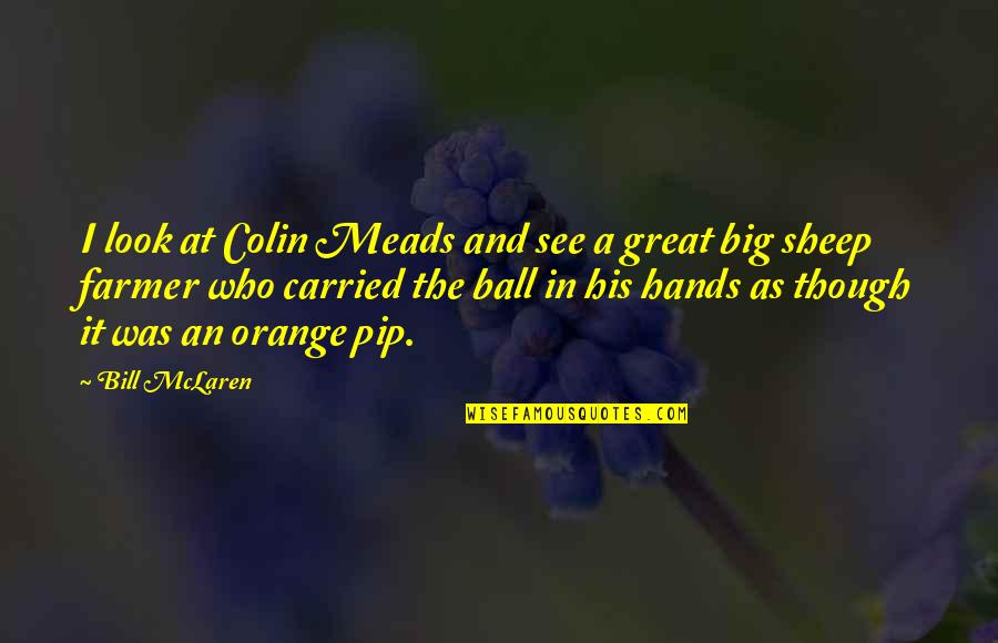 Quentin R. Bufogle Quotes By Bill McLaren: I look at Colin Meads and see a