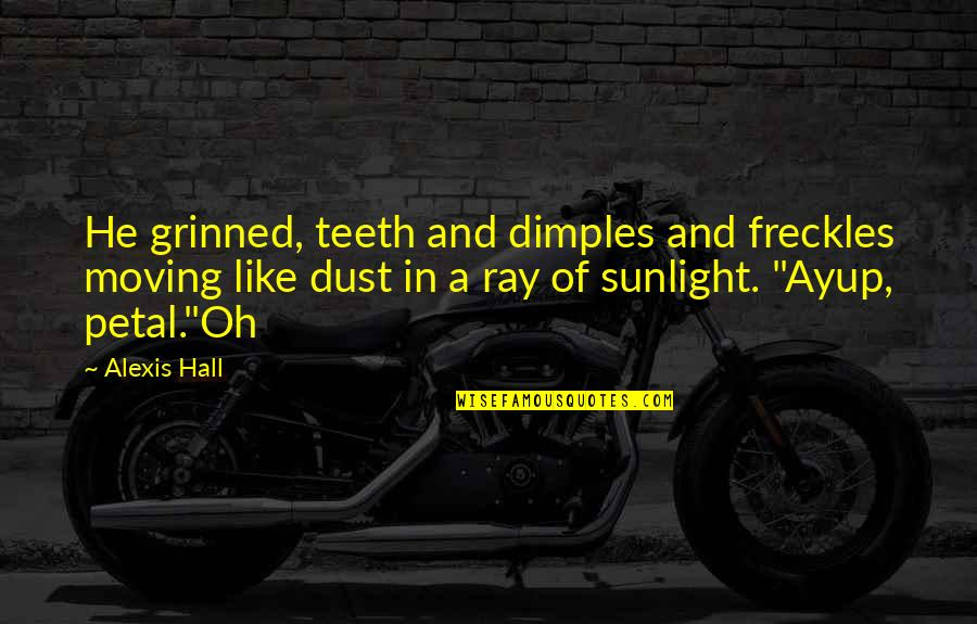 Quick Fixes Quotes By Alexis Hall: He grinned, teeth and dimples and freckles moving