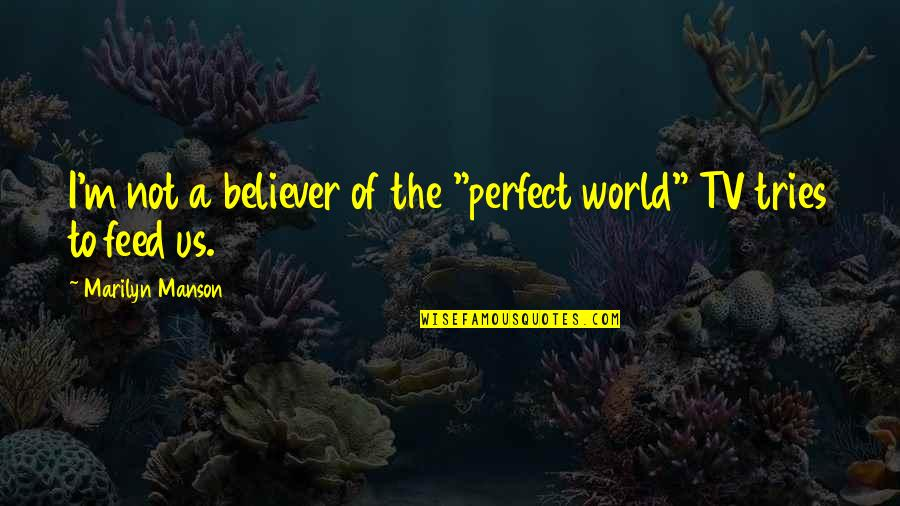 "Quick Fixes Quotes By Marilyn Manson: I'm not a believer of the ""perfect world"""