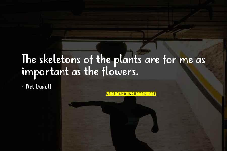 Quotes Fridge Magnets Quotes By Piet Oudolf: The skeletons of the plants are for me