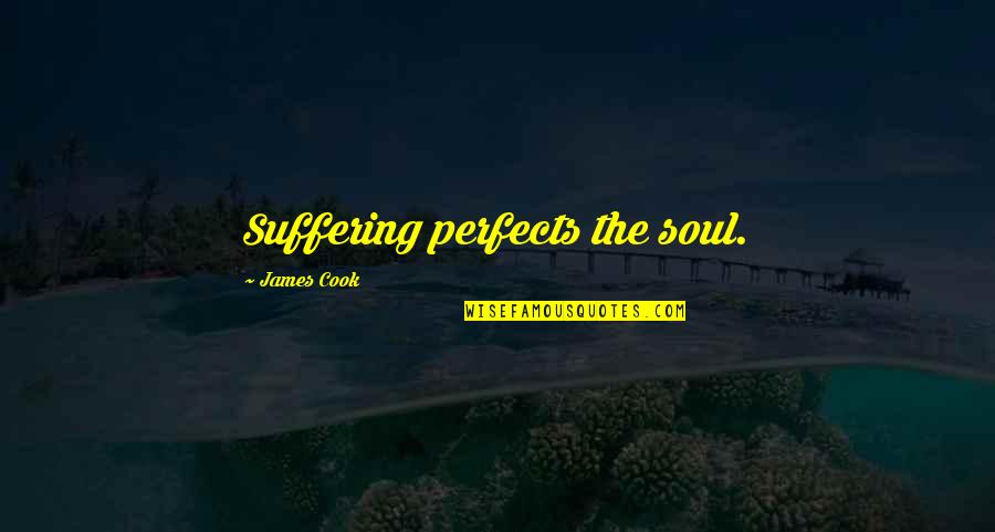 Quotes Jurassic Park 3 Quotes By James Cook: Suffering perfects the soul.