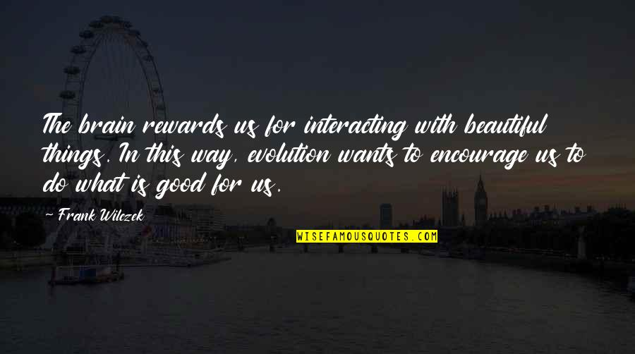 Quotes Mandarin Chinese Quotes By Frank Wilczek: The brain rewards us for interacting with beautiful