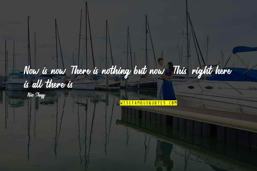 Quotes Masalah Hidup Quotes By Nic Sheff: Now is now. There is nothing but now...