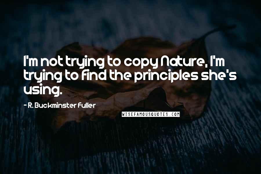 R. Buckminster Fuller quotes: I'm not trying to copy Nature, I'm trying to find the principles she's using.