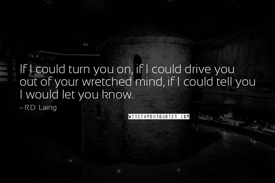 R.D. Laing quotes: If I could turn you on, if I could drive you out of your wretched mind, if I could tell you I would let you know.