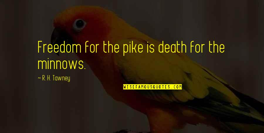 R.h Quotes By R. H. Tawney: Freedom for the pike is death for the