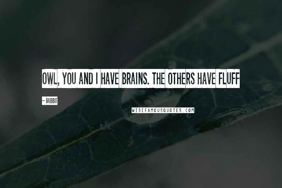 Rabbit quotes: Owl, you and I have brains. The others have fluff
