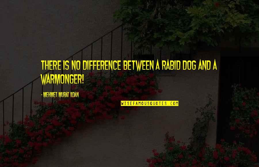 Rabid Dog Quotes By Mehmet Murat Ildan: There is no difference between a rabid dog