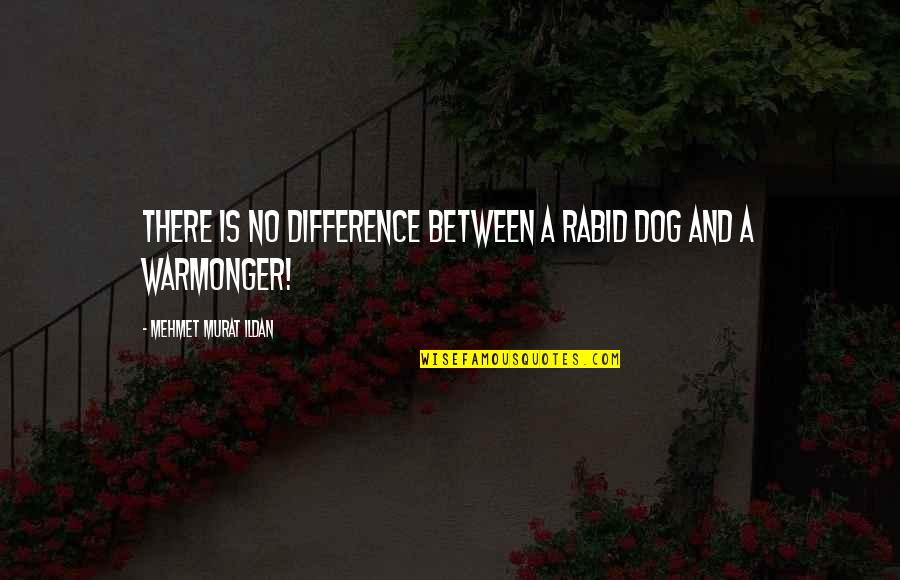 Rabid's Quotes By Mehmet Murat Ildan: There is no difference between a rabid dog