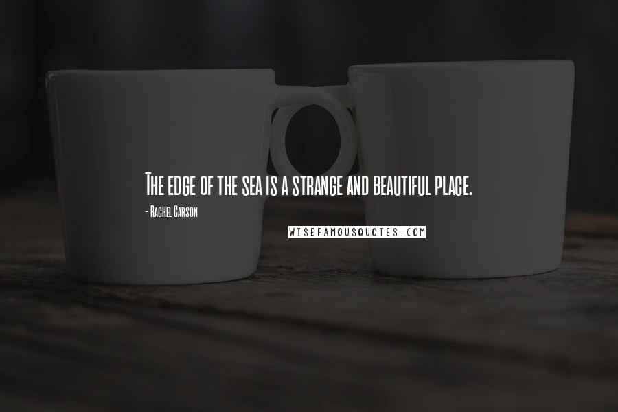 Rachel Carson quotes: The edge of the sea is a strange and beautiful place.