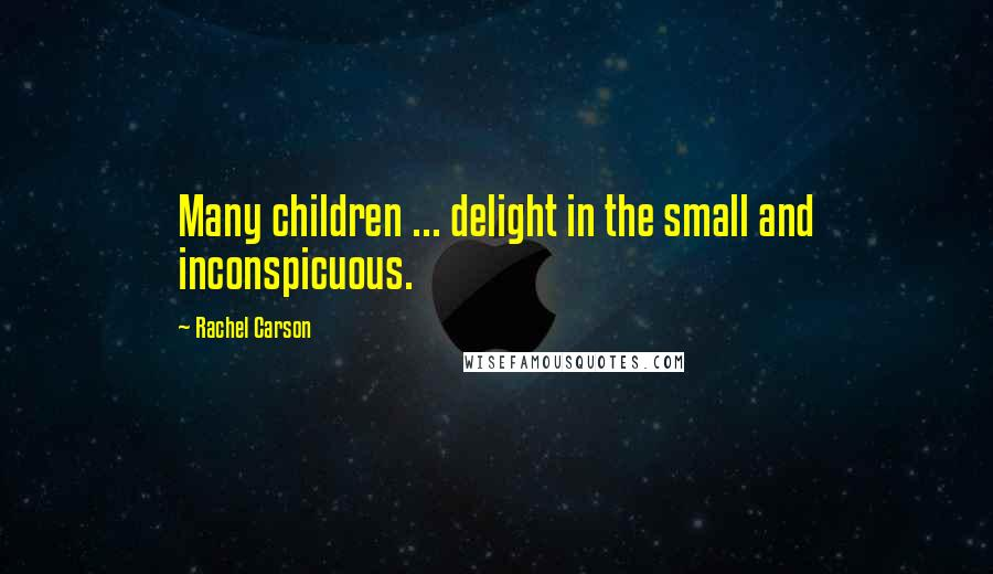 Rachel Carson quotes: Many children ... delight in the small and inconspicuous.