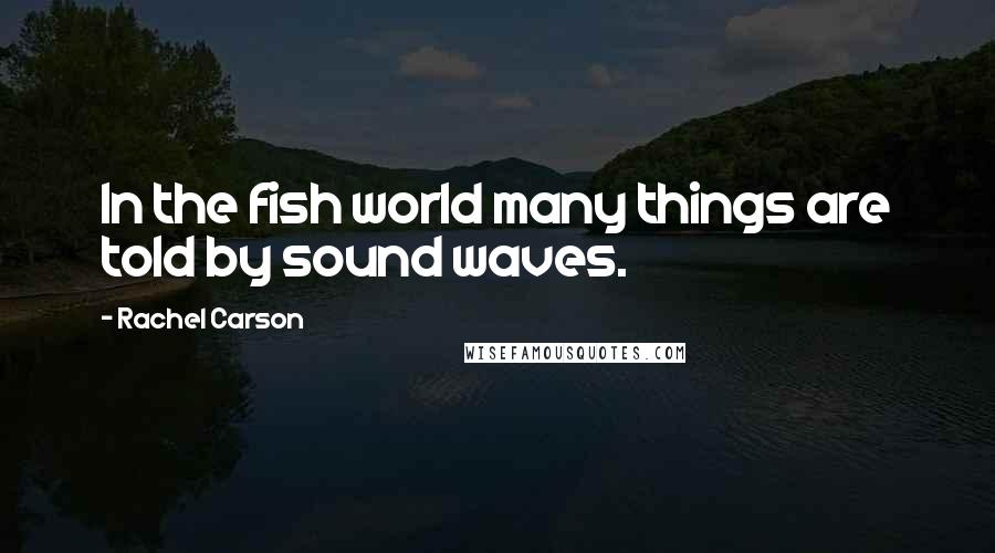 Rachel Carson quotes: In the fish world many things are told by sound waves.
