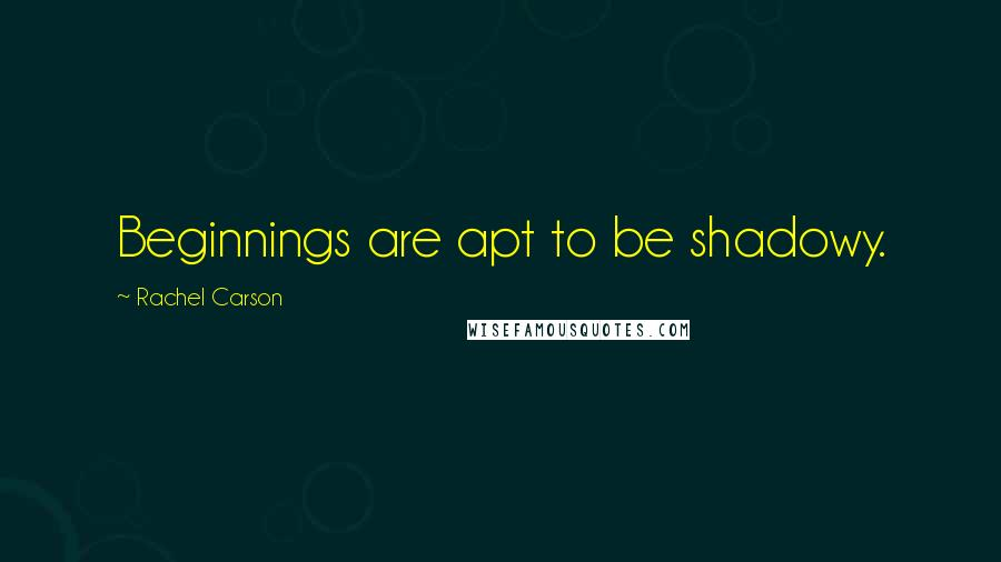 Rachel Carson quotes: Beginnings are apt to be shadowy.