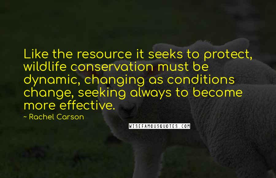 Rachel Carson quotes: Like the resource it seeks to protect, wildlife conservation must be dynamic, changing as conditions change, seeking always to become more effective.