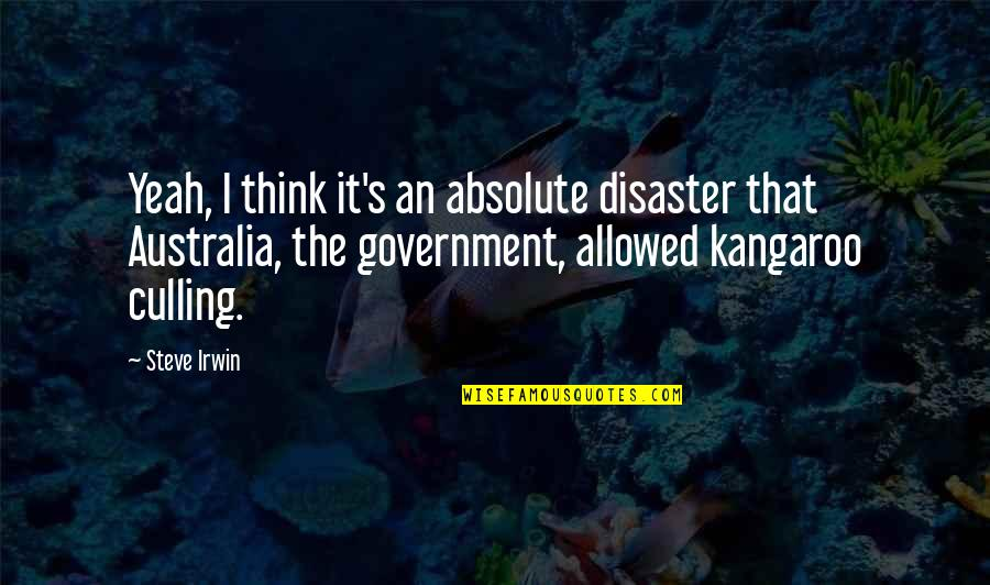 Radioactive Wolves Quotes By Steve Irwin: Yeah, I think it's an absolute disaster that