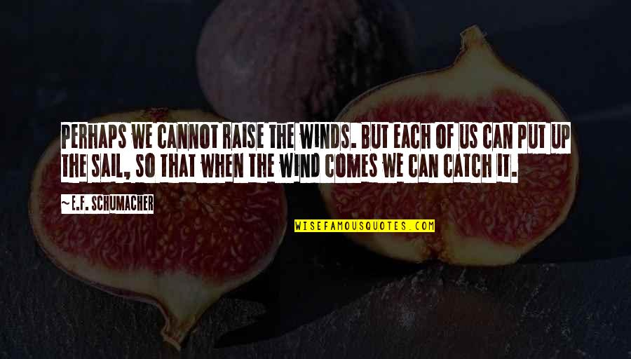 Raise Up Quotes By E.F. Schumacher: Perhaps we cannot raise the winds. But each