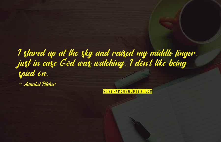 Raised Up Quotes By Annabel Pitcher: I stared up at the sky and raised
