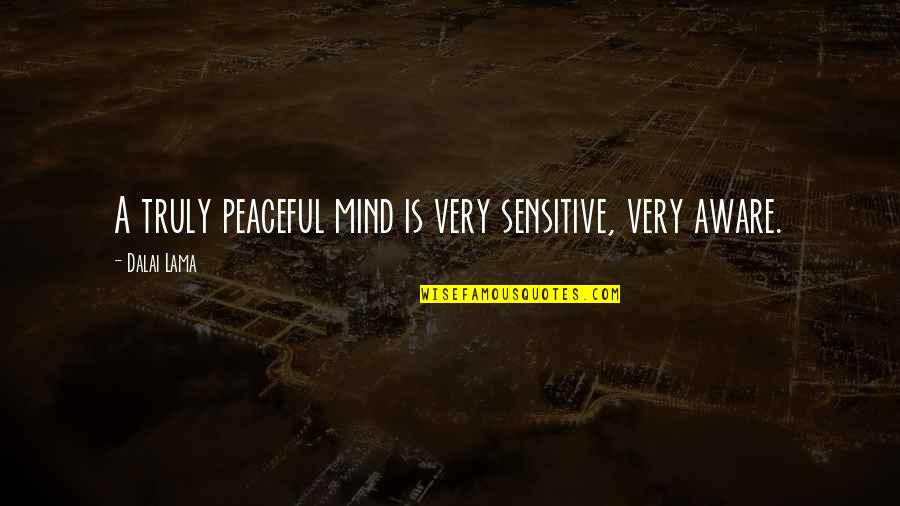 Raisons Quotes By Dalai Lama: A truly peaceful mind is very sensitive, very