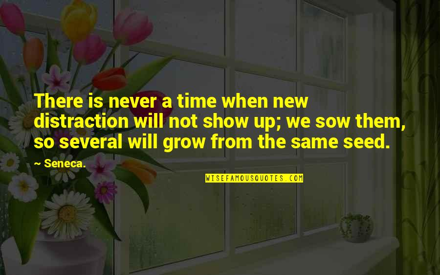 Raja Raja Cholan Quotes By Seneca.: There is never a time when new distraction