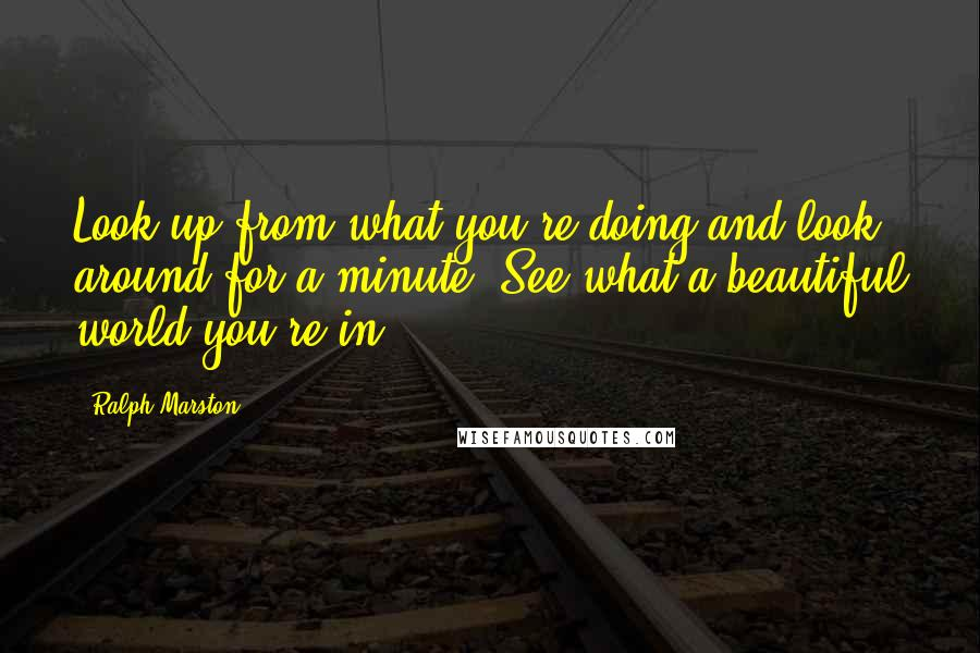 Ralph Marston quotes: Look up from what you're doing and look around for a minute. See what a beautiful world you're in.