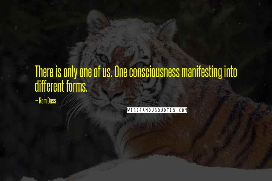 Ram Dass quotes: There is only one of us. One consciousness manifesting into different forms.