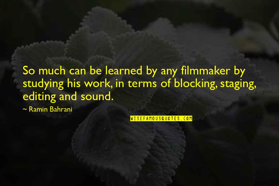 Ramin Quotes By Ramin Bahrani: So much can be learned by any filmmaker
