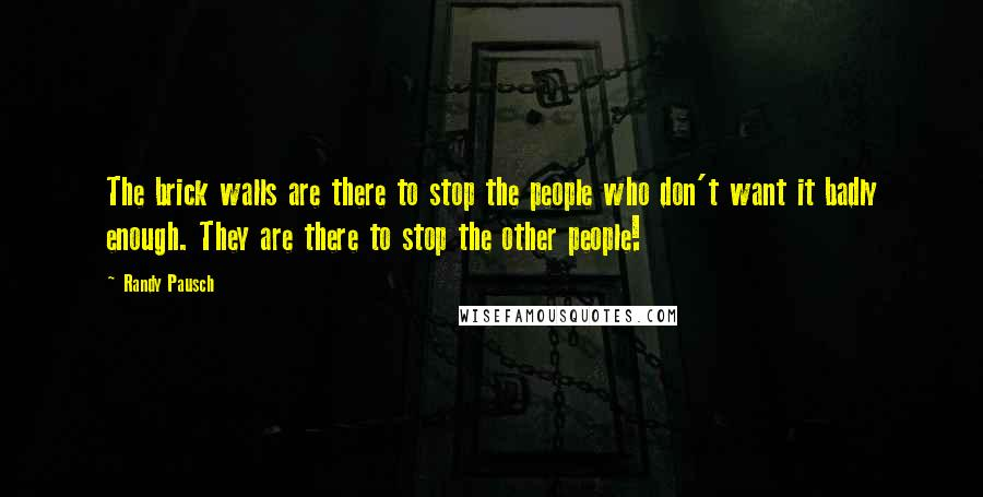Randy Pausch quotes: The brick walls are there to stop the people who don't want it badly enough. They are there to stop the other people!